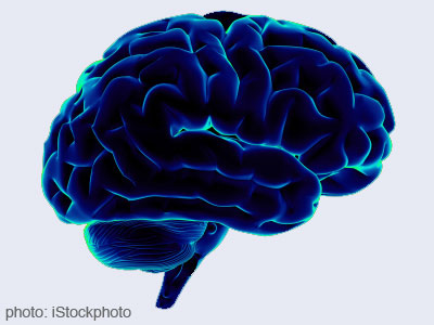Neuroscience all science subjects