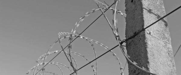 black and white photo of barbed wire