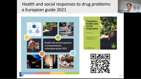 Screenshot of the EMCDDA webinar on health and social responses to cannabis showing chair person Jane Mounteney and a slide presenting the European Responses Guide