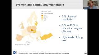 Screenshot of a presentation from the EMCDDA webinar on prison and drugs