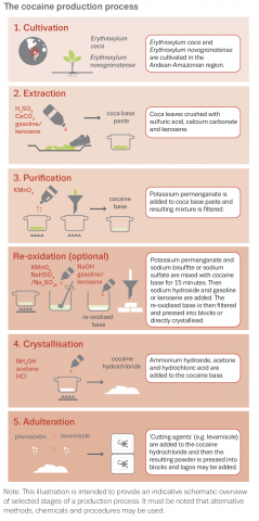 overview of the cocaine production process