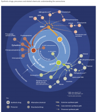 Infographic showing synthetic drugs, precursors and related chemicals