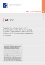 Cover of the risk assessment
