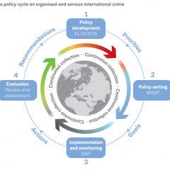 infographic showing the policy cycle on organised and serious international crime