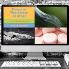 advertisement for web survey