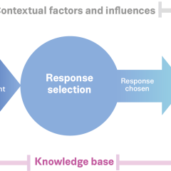 Stages of developing responses