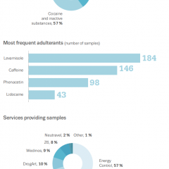 Infographic summarising data from January-June 2019 drug checking services, showing cocaine was the substance most frequently submitted to European drug checking services for testing.