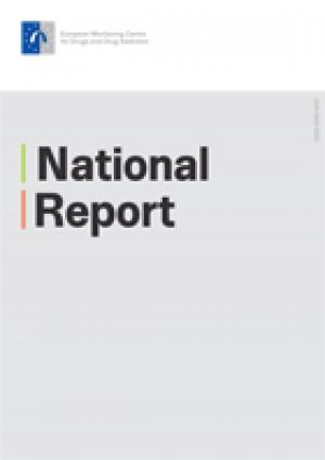 Publication cover of  National report 2013: Italy